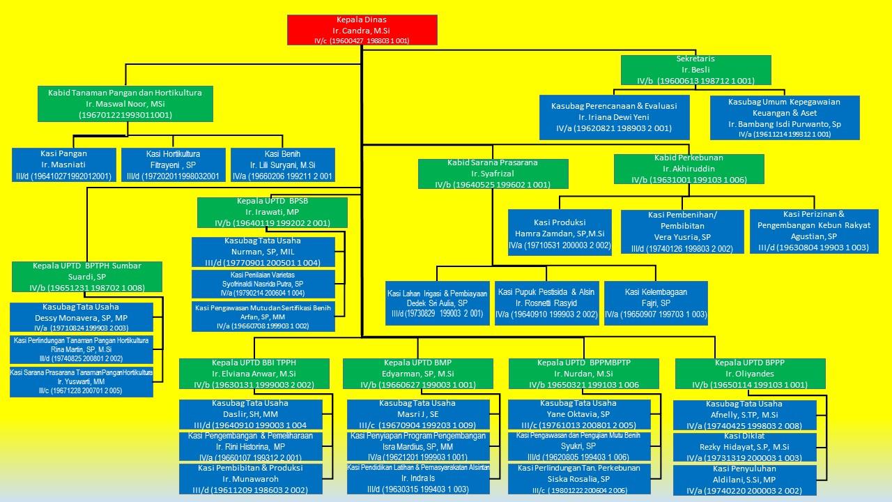 Struktur Organisasi Dinas Tanaman Pangan Hortikultura dan Perkebunan